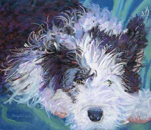 300-Old English Sheepdog Becky Golubski Joplin MO